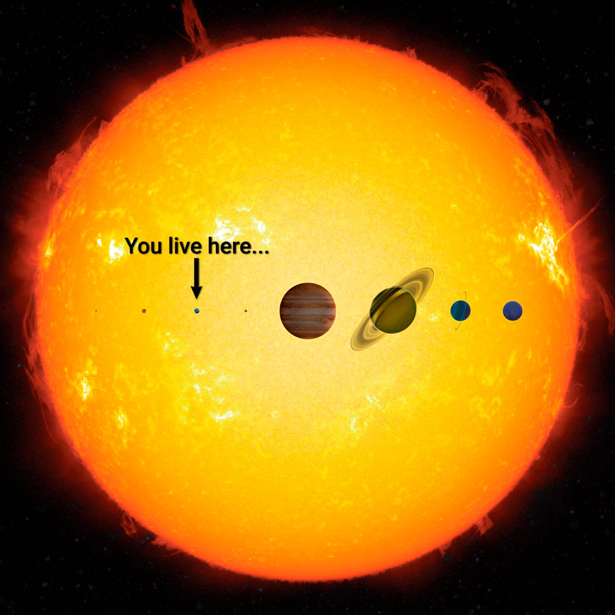 meaning-life-solar-system